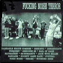 Fuckin Noise Terror - front